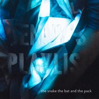 The Snake the Bat and the Pack — Jenny's Playlist