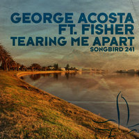 Tearing Me Apart — George Acosta feat. Fisher