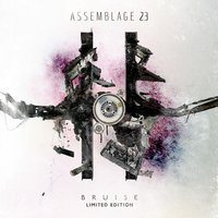 Bruise — Assemblage 23