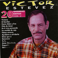 Sus 20 Super Exitos — Victor Estevez