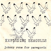Johnny Runs For Paregoric — Exploding Seagulls