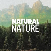 Natural Nature — Nature Sounds Nature Music