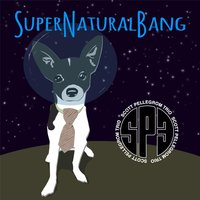 Supernaturalbang — Scott Pellegrom Trio