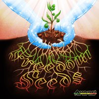 Freedom Seeds — Asadenaki & The Tuff Gang