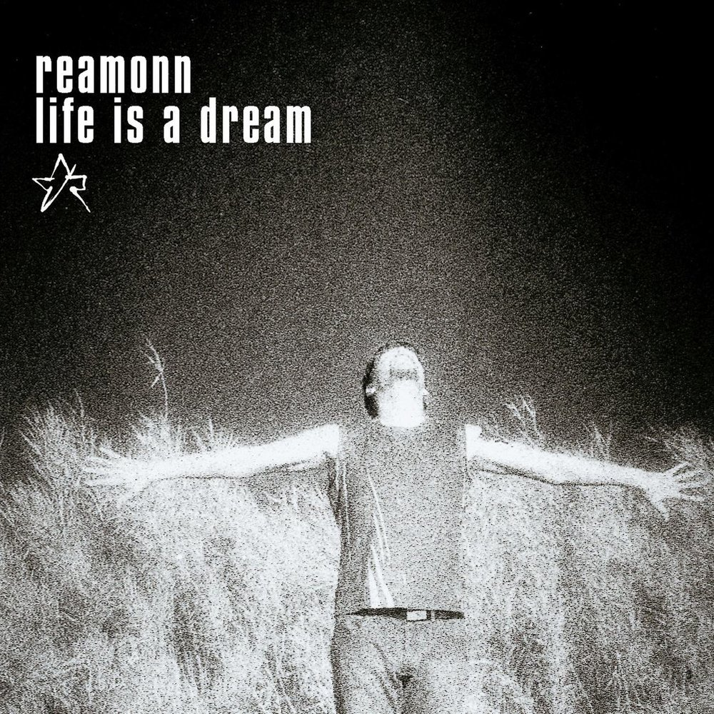 a dream of a new life Life is a dream is filled with unusual phrases, complex metaphors and the author put the events into one plot what helped him achieve a certain segismundo was fighting with his new role when clotaldo told him the truth he wasn't used to warmth and compassion so he started to act like a tyrants.