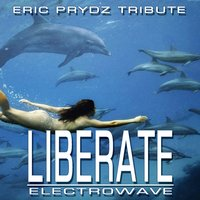 Liberate — Electrowave