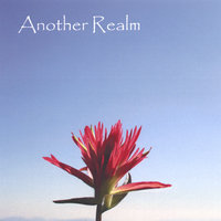 Another Realm (feat. Hankus Netsky And Linda Chase) — Another Realm