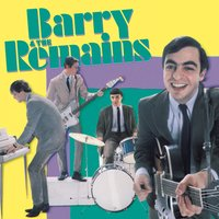 The Remains — Barry & The Remains
