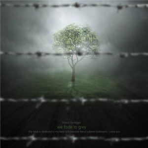 Florian Tonträger - Fade to Grey