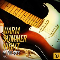 Warm Summer Night in the 60's, Vol. 1 — сборник