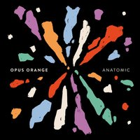 Anatomic — Opus Orange
