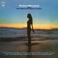 The Jimmy Wisner Sound — Jimmy Wisner
