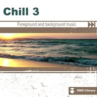 PMP Library: Chill, Vol. 3 — сборник