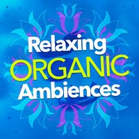 Relaxing Organic Ambiences — Relaxing Nature Ambience