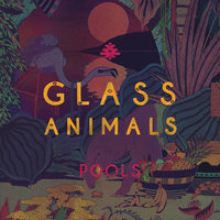 Pools — Glass Animals