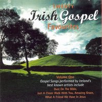 20 Irish Gospel Favourites - Volume 1 — сборник