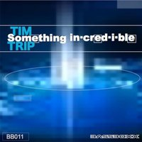 Something Incredible — Tim Trip