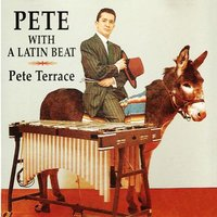 Pete With a Latin Beat — Pete Terrace