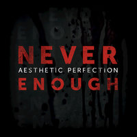 Never Enough — Aesthetic Perfection