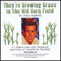 They're Growing Grass In The Old Corn Field — Terry Stafford
