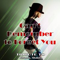 Can't Remember to Forget You : Tribute To Rihanna, Shakira — сборник