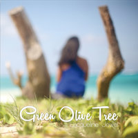 Green Olive Tree — Jacqueline Jewel