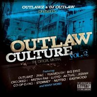 Outlaw Culture, Vol. 2: The Official Mixtape — DJ Outlaw