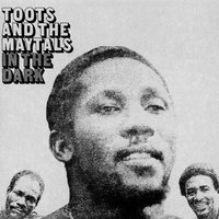 In The Dark — Toots & The Maytals