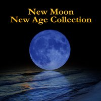 New Moon New Age Collection — Team Edward