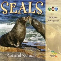 Seals — Our World's Sounds
