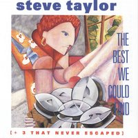 The Best We Could Find — Steve Taylor