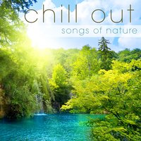 Chill Out: Songs of Nature — Eclipse