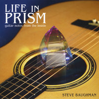 Life in Prism: Guitar Notes From the Inside — Steve Baughman