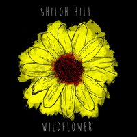 Wildflower — Shiloh Hill