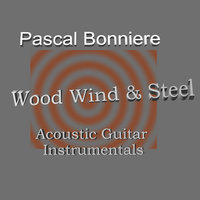 Wood Wind And Steel — Pascal Bonniere