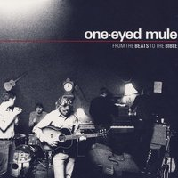 From The Beats To The Bible — One-Eyed Mule