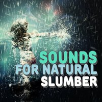 Sounds for Natural Slumber — Nature Sounds Sleep