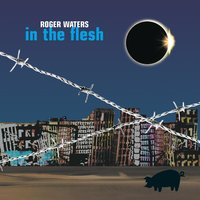 In The Flesh - Live — Roger Waters
