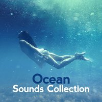 Ocean Sounds Collection — Ocean Sounds Collection
