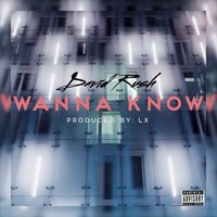 Wanna Know — David Rush