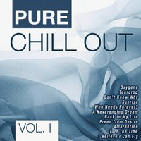 Pure Chill Out Vol. 1 — сборник