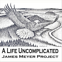 A Life Uncomplicated — James Meyer Project