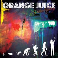 Evolution Monkey — Orange Juice