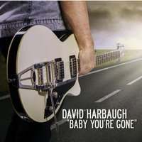 Baby You're Gone — David Harbaugh