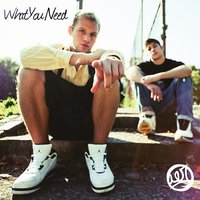 What You Need EP — Aer