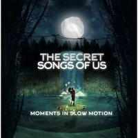 Moments in Slow Motion — The Secret Songs of Us