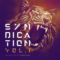 Sounds of Syndication, Vol .1 (Presented by Syndicate) — Syndicate