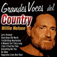 Grandes Voces del Country: Willie Nelson — Willie Nelson