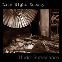 Under Surveilance — Late Night Sneaky