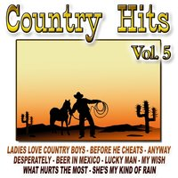 Country Hits Vol.5 — The Cowboy Band